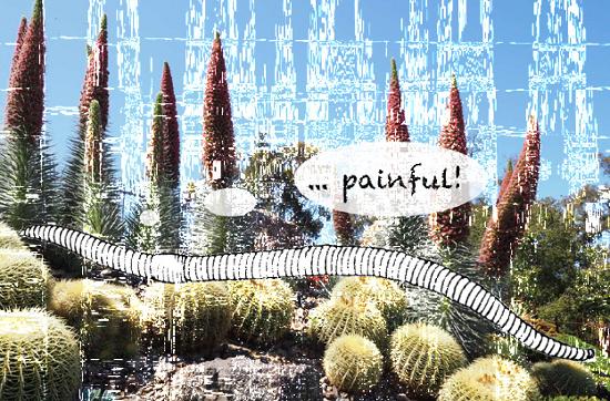 schaffner_earthworm_02
